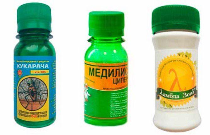 Препараты от клопов