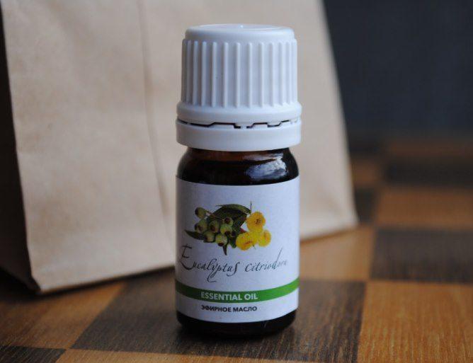 Эвкалипт лимонный