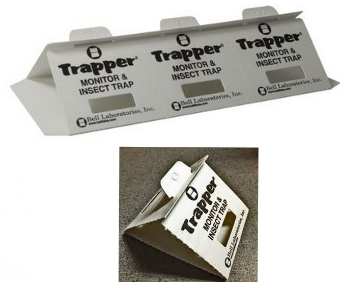 Trapper Insect Trap
