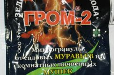 Гром-2