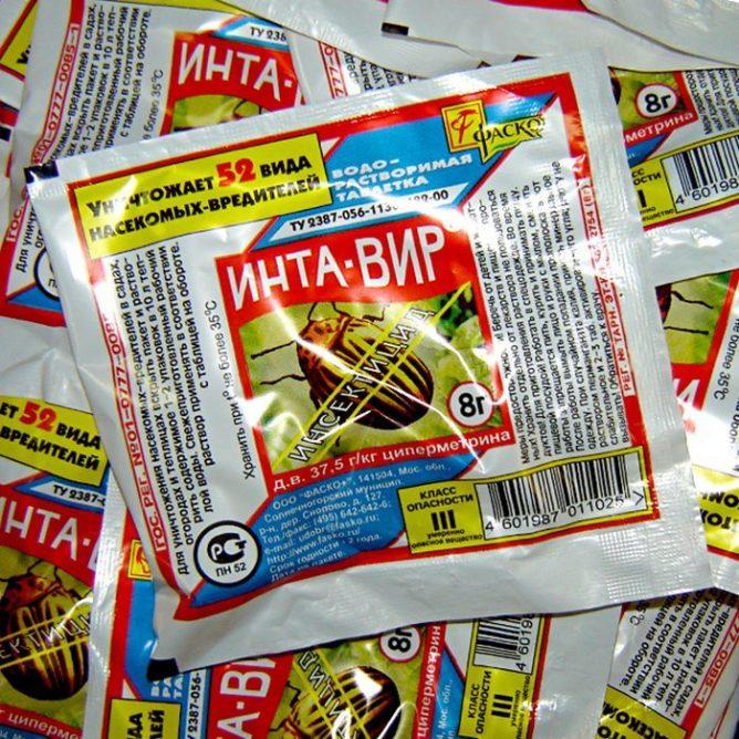 muha 10 668x668 - Как бороться с луковой мухой на грядке: обзор средств