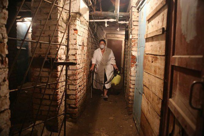 Уничтожение блох в подвале