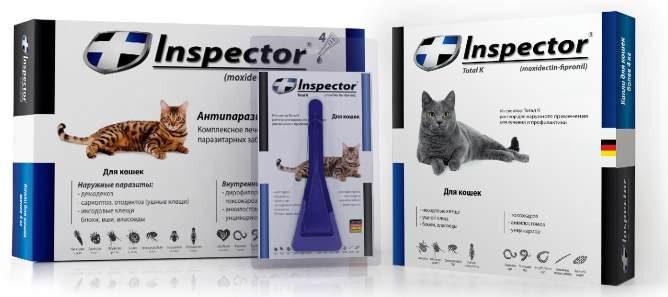 Инспектор для котов